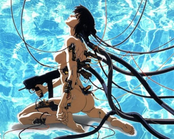 Ghost In The Shell Innocens
